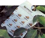 I växthuset kan många skadegörare bekämpas med nyttodjur. Djuren köps på postorder och placeras ut bland växterna så fort de anlänt.