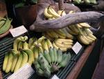 Olika bananer