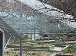 Den omgjorda lökgården