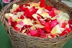 Rosenblad i korg