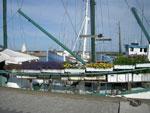 En trädgårdsmänniskas båtsemester (Säby Havn, Danmark)