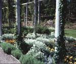 Brunnsparken i Ronneby